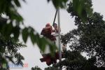Perawatan Fasilitas Publik Lampu Jalanan di Jakarta Pusat