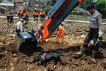 UGM: Perubahan Tata Guna Lahan Penyebab Banjir di Garut