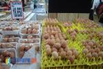 Pedagang di Kalteng Khawatirkan Harga Telur Jelang Ramadan
