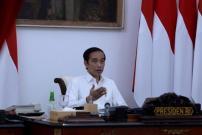 Presiden Minta Pandemi Jadi Momentum Meningkatkan Ekonomi Desa
