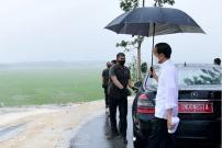 Jokowi Harapkan Panen Padi di Sumba Tengah Dua Kali Setahun