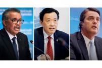 FAO, WHO, WTO Serukan Pengurangan Dampak COVID-19 Pasokan Makanan