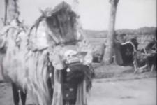 Bali Tempo Doeloe ke 20: Barong dalam Mitologi Kini dan Nanti