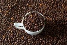 Banyuwangi Ajak Komunitas Ikuti Coffee Processing Festival