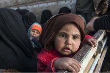 100.000 Bayi Meningggal Setiap Tahun Akibat Perang