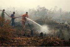 Kebakaran Ratusan Ha Hutan dan Lahan di Riau, Warga Merasa 'Sesak'