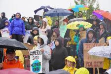 Jerman Keluarkan Paket Aksi Iklim Sejumlah 60 Miliar AS Dolar