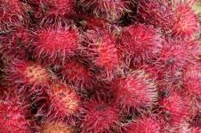 Rambutan, Sumber Vitamin C dan Antibakteri
