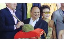 Durian Termahal di Dunia Terjual Seharga 700 Juta Rupiah