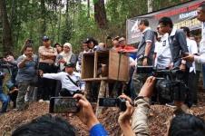 BBKSDA Jatim Lepasliarkan Satu Elang Jawa