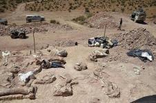 Fosil Mirip Kaki Seribu Skotlandia Hewan Darat Tertua Dunia