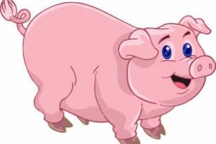 Karyawan Tiongkok Dapat Bonus Imlek 60 Ekor Babi