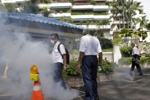 Singapura Imbau Perempuan Hamil Periksakan Diri Terkait Gejala Zika
