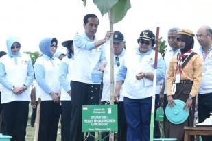 Saat Ditanya Jokowi, Warga Ragu Pohon Ditanam Akan Tumbuh