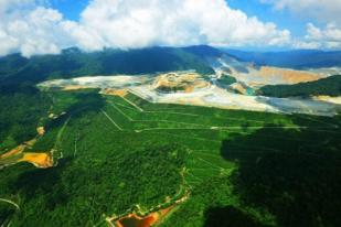 Pemerintah Akan Reklamasi Tambang 7.000 Hektar Lebih