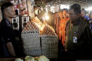 Harga Telur Ayam Alami Kenaikan Drastis di Kupang