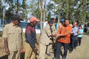 Pohon Adat Hambat Listrik Masuk Kampung di Papua