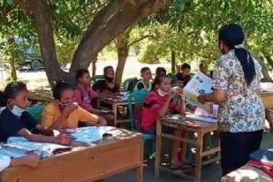Tak Ada Sinyal Internet, Siswa Sikka Belajar di Bawah Pohon