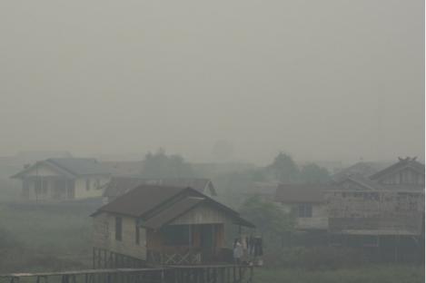 Polisi Usut 238 Kasus Pembakaran Hutan dan Lahan