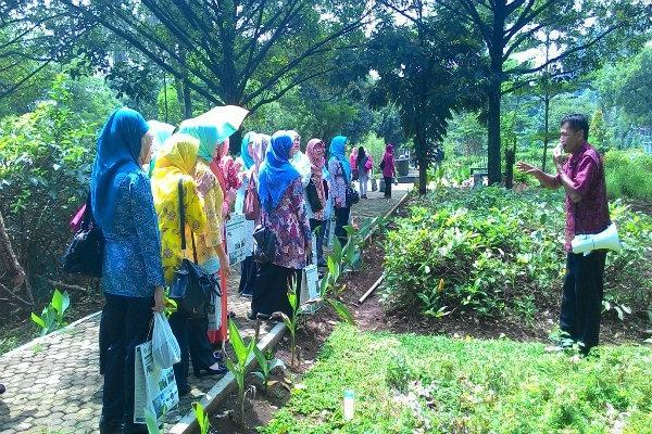 Satu Harapan Kawasan Wisata Ilmiah Tanaman Obat Bogor