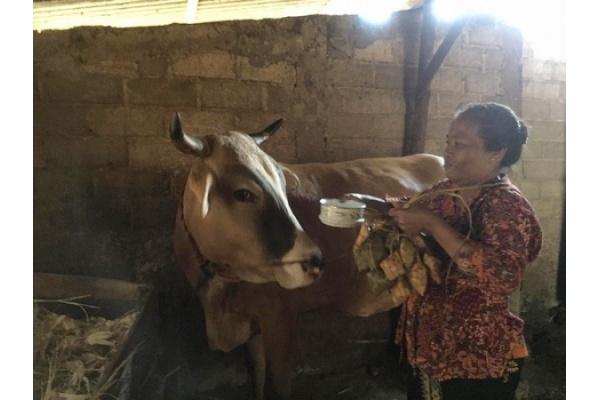 Kartini Kendeng Ngalungi Indonesia